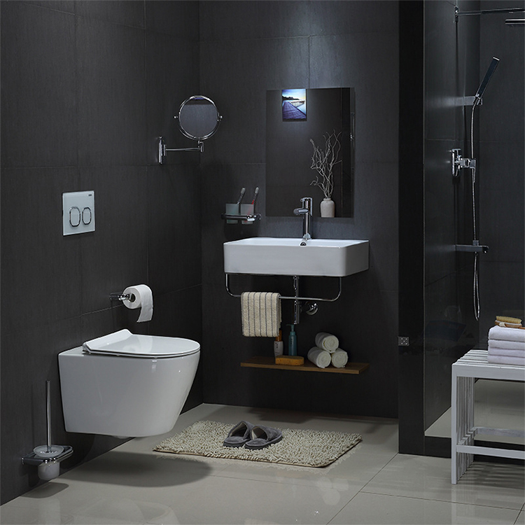 wall mounted toilet wc